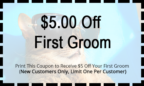 $5.00 Off First Groom